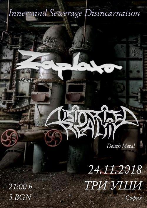 Концерт на Distorted Reality и Zaplaxa