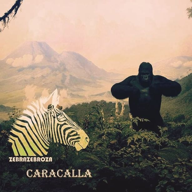 Zebrazebroza - Caracalla